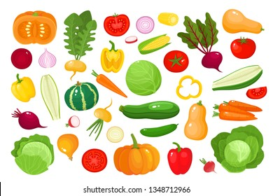 Bright vector illustration of colorful vegetables. Fresh cartoon organic vegetable isolated on white background used for magazine, book, poster, card, menu cover, web pages.