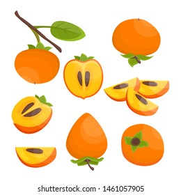 Bright vector set of colorful half, slice and whole of juicy persimmon. Fresh cartoon persimmon isolated on white background. Juice or jam illustration.