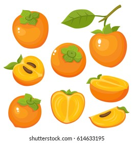 Bright vector set of colorful half, slice and whole of juicy persimmon. Fresh cartoon persimmon isolated on white background. Juice or jam logotype.
