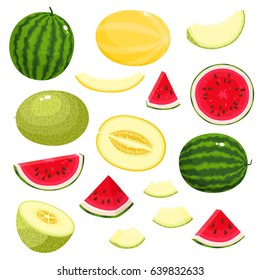 Bright vector set of colorful half, slice and whole of melon, watermelon. Fresh cartoon exotic fruit isolated on white background.