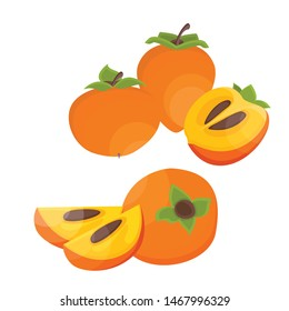 Bright vector slice and the whole of juicy persimmon. Fresh cartoon persimmon isolated on white background. Juice or jam illustration.