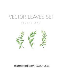 Bright vector watercolor leaf isolated on white background