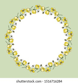 Bright wreath of Buttercup flowers. Layered vector file.Buttercups.Buttercup. For cards, invitations, brochures, business cards, restaurant menus.Green background.
