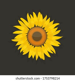 Bright yellow sunflower. Flat cartoon flower isolated on black background. Vector logo or icon. Stock illustration.