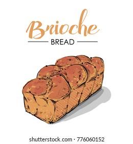Brioche bread drawing. Sketch style. Vector.