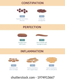 Bristol stool chart with medicine description of type human feces - constipation, perfection and diarrhea with intestinal inflammation. Vector illustration.