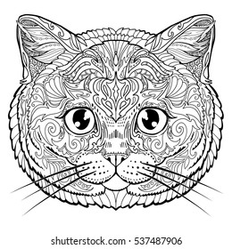 British cat face doodle coloring book page for adult. Vector illustration.