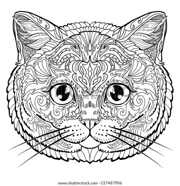Yetiskin Icin Ingiliz Kedi Yuz Doodle Stok Vektor Telifsiz 537487906