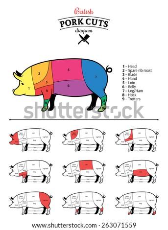 british pork cuts diagram 450w 263071559 british pork cuts diagram stock vector (royalty free) 263071559
