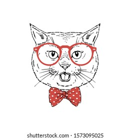 British shorthair breed cat wear red glasses, tie bow isolated on white background Symmetrical pet head. Realistic hand drawn vector illustration.