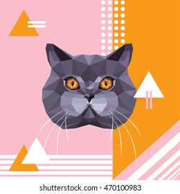 British shorthair cat breed portrait on playful trendy memphis style background with pink, orange and white geometric shapes