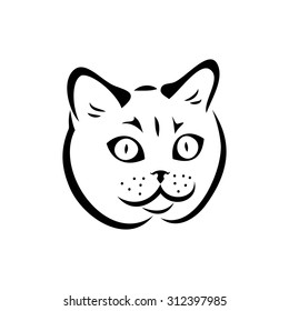 British shorthair cat - vector illustration