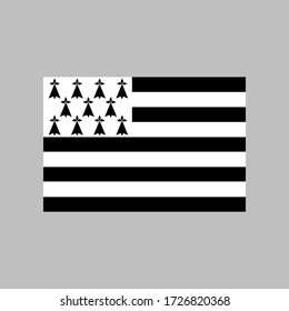 Brittany flag vector illustration in high quality for ui and ux, website or mobile application