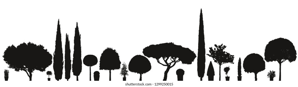 broad variety or assortment of vector trees and plants silhouettes isolated on white background