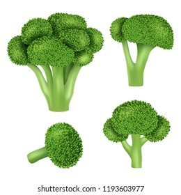Broccoli cabbage icon set. Realistic set of broccoli cabbage vector icons for web design isolated on white background