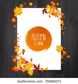 Brochure with autumn leaves. Vector autumn design. Fall theme.