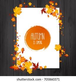 Brochure with autumn leaves. Vector autumn design. Fall theme.