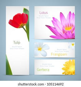 Brochure design, water lily flower, frangipani and tulip vector template. Exotic tropical flowers invitation card layout. Background design for banners