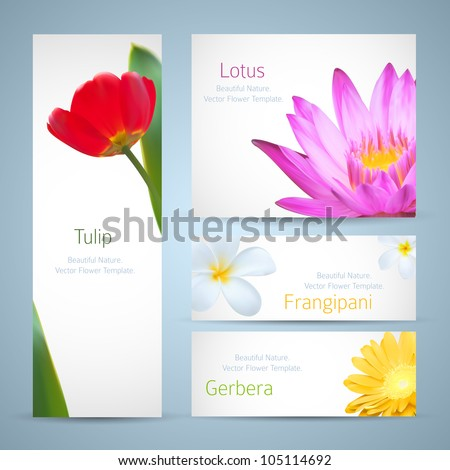 Brochure Design Water Lily Flower Frangipani Stock Vector Royalty
