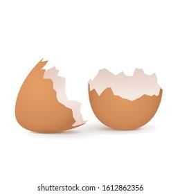 Broken egg shell. Vector 3d illustration isolated on white background