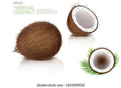 Broken and whole coconut, half coco nut with green palm leaves, isolated on white background, top view. Design element for food packaging, ingredient for natural organic cosmetics.