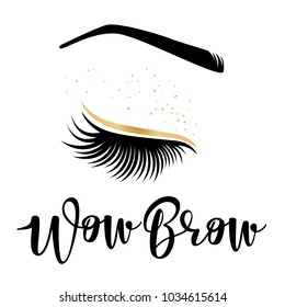 Brow studio. Vector illustration of lashes and brows. For beauty salon, lash extensions maker, brows master.