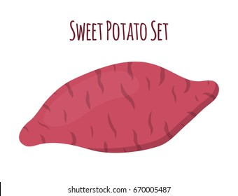 Brown batat, sweet potato. Organic healthy vegetable. Fresh natural root. Made in cartoon flat style