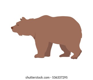 Brown bear flat style vector. Wild and dangerous omnivorous animal. Northern fauna species. For nature concepts, children's books illustrating, printing materials. Isolated on white background