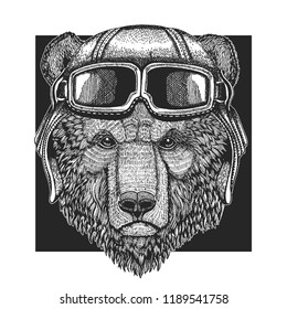 Brown bear wearing aviator hat. Print for children clothes, tee, t-shirt. Pilot wild animal