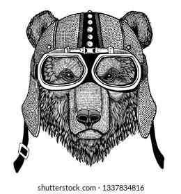 Brown bear Wild animal wearing motorcycle, aero helmet. Biker illustration for t-shirt, posters, prints.