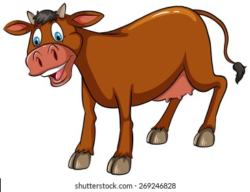 Brown cow standing with white background