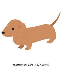 brown Dachshund illustration