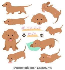 brown Dachshund illustration set