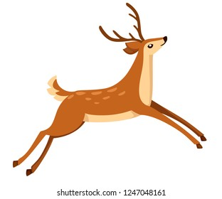 Brown deer run and jump. Hoofed ruminant mammals. Cartoon animal design. Cute deer with antlers. Flat vector illustration isolated on white background.