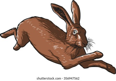Brown hare, running with four paws off the ground, 3/4 view, detailed vector illustration.