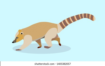 Brown nosed coati vector illustration