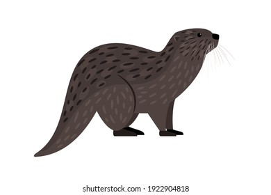Brown otter. Cartoon river carnivore, funny swimming mammal, vector illustration of furry cute exotic animal isolated on white background
