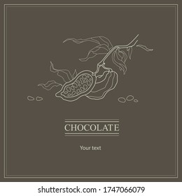 Brown retro banner with cocoa plant. Vintage picture about cacao and chocolate with line illustration.