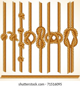 Brown Rope borders with Different Knots, seamless vector elements for your design