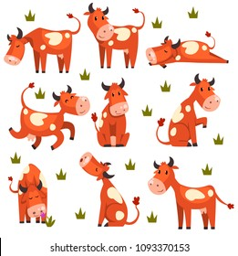 Brown spotted cow set, farm animal character in various poses vector Illustrations on a white background