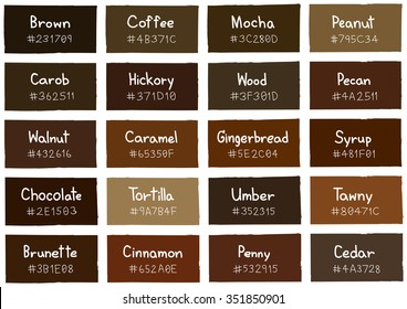 Brown Tone Color Shade Background with Code and Name Illustration