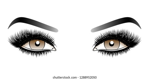 Brown woman eyes with long false lashes with eyebrows. Vector illustration isolated on white background. Ink drawing. Eye makeup.