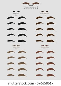 Brunette dark brown color brow. Perfect Eyebrows contour Set. Template Art. Types and shapes of brows. Vector illustration.