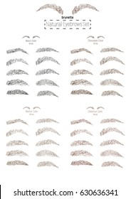 Brunette dark brown color brow. Natural Perfect Eyebrows freehand drawing art Set. Types and shapes of brows. Realistic style. Vector illustration.