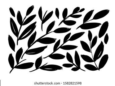 Brush branches with long leaves vector collection. Set of black silhouettes leaves and branches. Hand drawn eucalyptus foliage, herbs, tree branches. Vector ink elements isolated on white background.