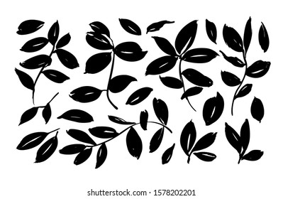 Brush leaf vector collection. Hand drawn eucalyptus foliage, herbs, tree branches. Set of black silhouettes leaves and branches. Vector elements isolated on white. Modern brush ink illustration