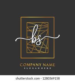 BS Initial Handwriting logo template vector