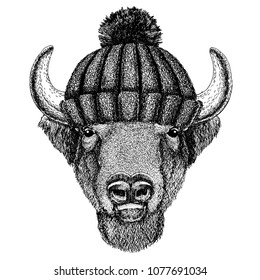 Buffalo, bison,ox, bull Cool animal wearing knitted winter hat. Warm headdress beanie Christmas cap for tattoo, t-shirt, emblem, badge, logo, patch