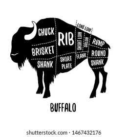 Buffalo cutting charts vector illustration for butchers shop guide. Label for farm design