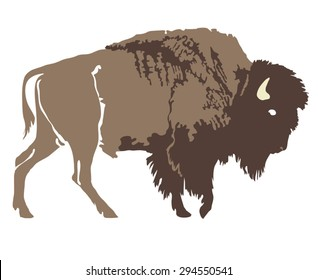 Buffalo. Hand-drawn illustration. Design for logo, t shirt, bag etc.